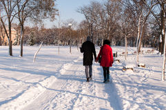 Couple holding each other's hands going through the park in the winter Royalty Free Stock Images