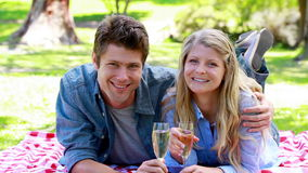 Couple holding glass of champagne. In a park stock video