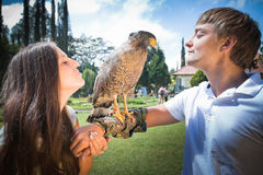 Couple holding on a hand of beautiful eagle Royalty Free Stock Images