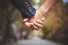 Couple holding hand together in park Stock Images