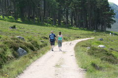 Couple holding hands. Walking in countryside Stock Photography