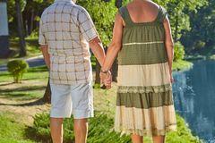 Couple holding hands, back view. stock images
