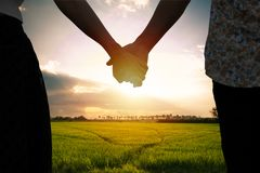 Couple holding hands and Beautiful sunlight. On the sky in background Royalty Free Stock Photo