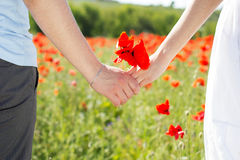 Couple holding hands in the fields of poppies Royalty Free Stock Photos