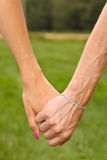 Couple holding hands in meadow Stock Photography