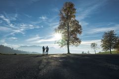 Couple Holding Hands in Nature Silhouette