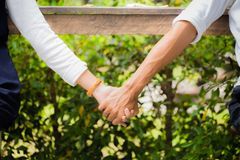 Couple holding hands in the park, together. Closeup of couple holding hands in the park, together Stock Image