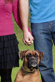 Couple Holding Hands with their Dog Stock Photos