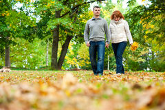 Couple holding hands and walking Royalty Free Stock Photo