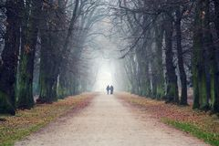 Couple holding hands walking in beautiful romantic autumn alley, cloudy foggy day, partner issues psychology relationship concept. Prague game reserve Hvezda stock images