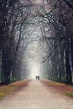 Couple holding hands walking in beautiful romantic autumn alley, cloudy foggy day, partner issues psychology relationship concept. Prague game reserve Hvezda royalty free stock photos