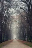 Couple holding hands walking in beautiful romantic autumn alley, cloudy foggy day, partner issues psychology relationship concept. Prague game reserve Hvezda royalty free stock photo