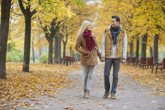 Couple holding hands while walking in park during autumn Stock Image