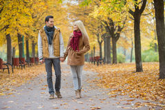 Couple holding hands while walking in park during autumn Royalty Free Stock Photo
