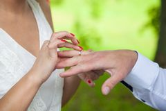 Couple holding hands. On weddings Stock Photos