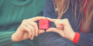 Couple holding little gift Royalty Free Stock Photos