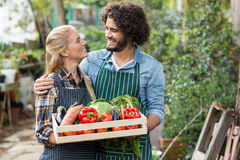 Couple holding vegetables crate outside greenhouse Stock Photography