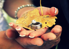 Couple holding wedding rings Stock Image