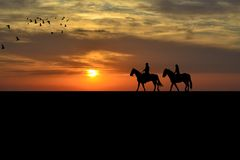 A couple on a horse riders at sunset. A couple on a horse riders at sunrise Stock Photos