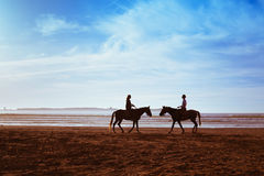 Couple with horses Royalty Free Stock Photo