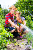 Couple with hose watering Royalty Free Stock Photography