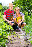 Couple with hose watering garden Royalty Free Stock Photo