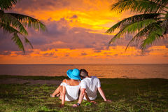Couple in hug watching together sunset. Under palm tree Royalty Free Stock Photo