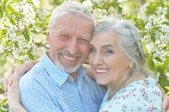 Couple  hugging in  blooming garden Royalty Free Stock Images