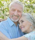 Couple  hugging in  blooming garden Stock Images