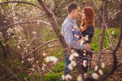 Couple hugging in the garden Stock Images