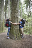 Couple Hugging Tree In Forest Stock Image