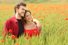 Couple hugging and walking in a green field Stock Image