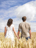 Couple hugging in wheat field Stock Photos
