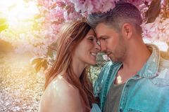 Sunny day. Couple inside of blossom tree royalty free stock photos