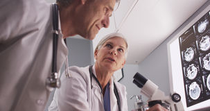 A couple of intelligent mature radiologists discussing research Stock Images