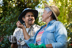 Couple interacting with each other while gardening in the garden. On a sunny day Stock Image