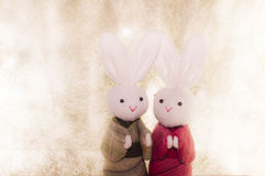 Couple Japanese rabbits and paper background. Couple cute Japanese rabbits on paper background Royalty Free Stock Image
