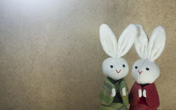 Couple Japanese rabbits and wood background. Couple cute Japanese rabbits on wood background Royalty Free Stock Photos