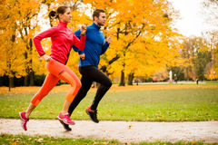 Couple jogging in autumn nature. Running together - friends jogging together in park, rear view stock photo