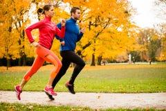Couple jogging in autumn nature Stock Photo