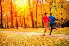 Couple jogging in autumn nature Royalty Free Stock Images