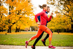 Couple jogging in autumn nature Stock Photography
