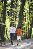 Couple jogging in beech forest Stock Photography