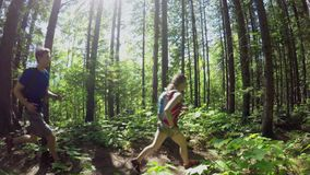 Couple jogging in the forest 4k. Couple jogging in the forest on a sunny day 4k stock video footage