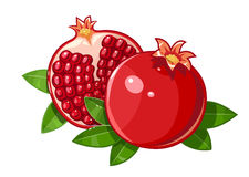 Couple juicy ripe pomegranate fruit stylized leaf Royalty Free Stock Photo
