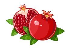 Couple juicy ripe pomegranate fruit stylized leaf Royalty Free Stock Photo