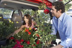 Couple Keeping Flower Plants In Car's Boot Stock Photography