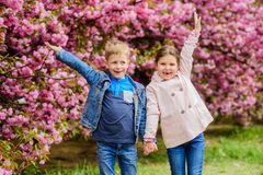 Couple kids walk sakura tree garden. Tender love feelings. Little girl and boy. Romantic date. Spring time to fall in. Love. Kids in love pink cherry blossom royalty free stock photos