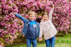 Couple kids walk sakura tree garden. Tender love feelings. Little girl and boy. Romantic date. Spring time to fall in royalty free stock photos