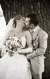 Couple kiss Royalty Free Stock Image